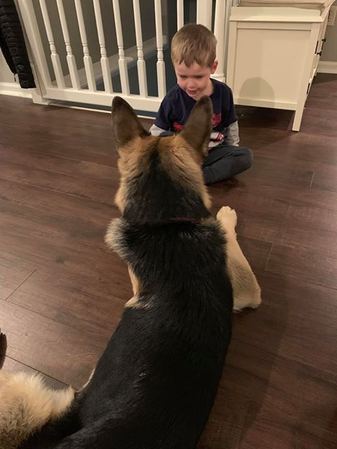 Zeus with kiddo 12-5-18